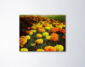 Large Canvas Print, Orange Art, Yellow Art, Large Floral Art, Flower Canvas Art, Marigold Art On Canvas, Wall Art, Canvas Print, Green