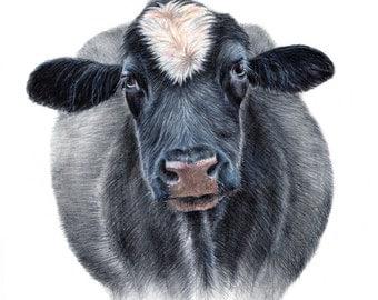cow illustrations - cow art - art prints - cow - animal illustration  - nursery wall art  - A3