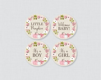 Pink Pumpkin Baby Shower Cupcake Toppers and Cupcake Wrappers Printable It's a Boy AND Girl - Instant Download - Little Pumpkin Fall 0032-P