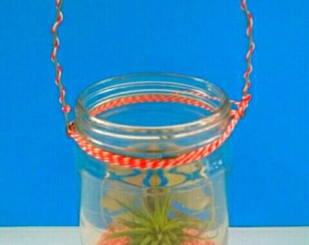 Unique Repurposed Vintage Glass Jar Planter With Sand Art And Air Plant, Recycled, Upcycled, Air Plant, Made By Mod.