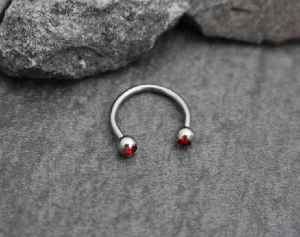 10PCS Colorful Steel Horseshoe Nose Septum Rings Ear Rings ... |Septum Piercing Horseshoe Ring