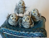 Owl Chicks in Their Best Camouflage - Hand Carved in USA - OOAK