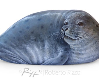 Stunning Rock Painted Seal | Painted Stones by Roberto Rizzo | Rock Painting Fine Art Hand Painted with High Quality Acrylics and Brushes