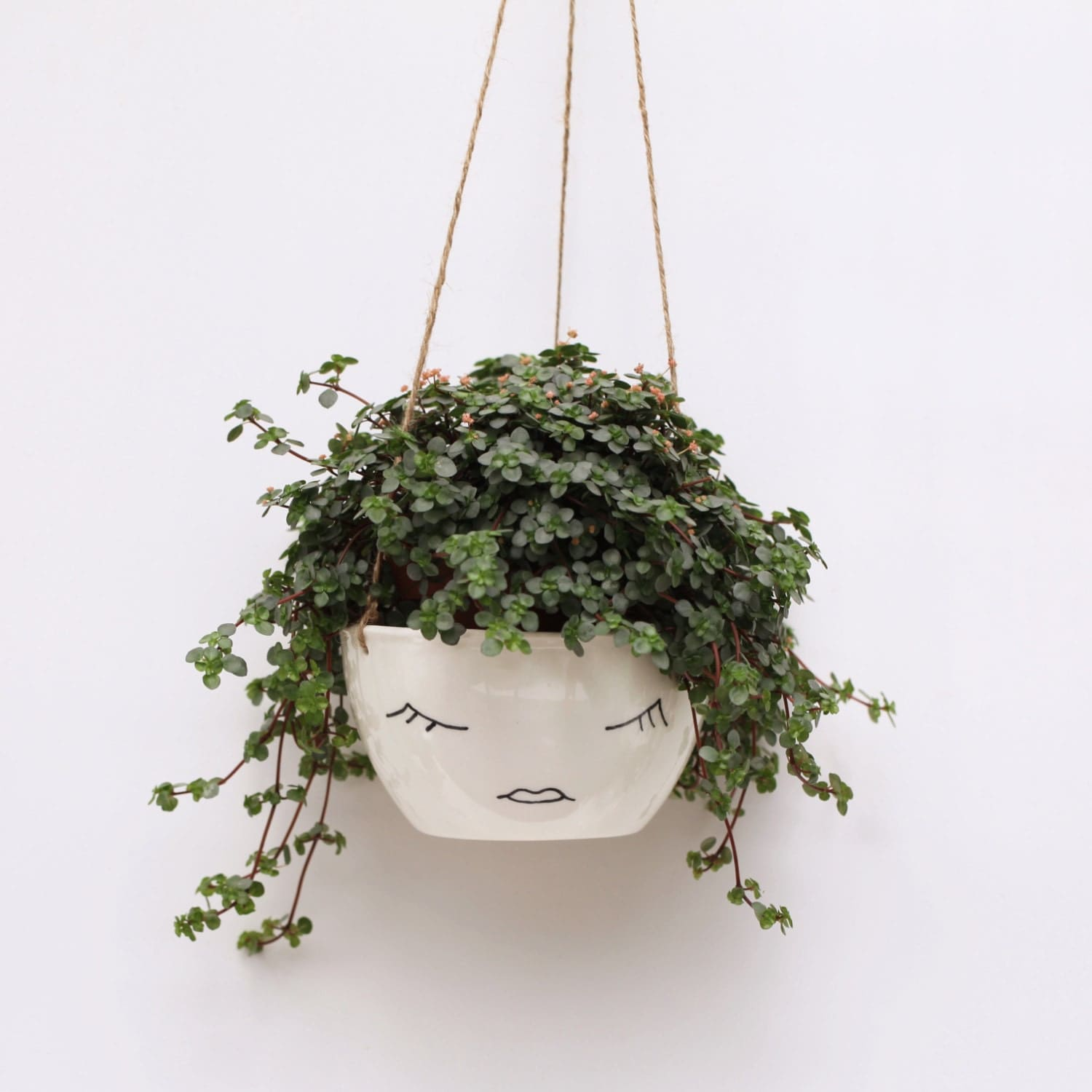 White ceramic hanging planter face plant pot character for Plante a planter