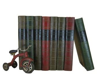 Brown, Red, Green  Decorative Books for Interior Design and Home Decor, Blue Vintage Books, World's Popular Classics