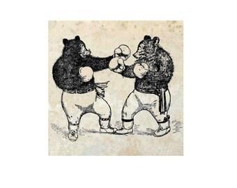 Boxing Bears Coaster- Single- Nature-Bears-Humor-Boxing-Animals-Gift Ideas-Drink Coasters-Home Decor