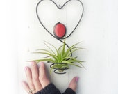 Air Plant Holder- Heart Wire Hanging with Red Glass Bead