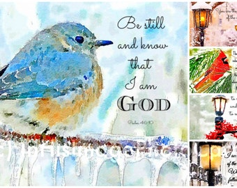 Christian Winter Greeting Cards - Set of 5 Vibrantly Colored Bible Verse Photo Greeting Cards