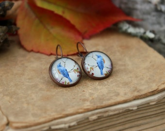 Blue Bird On A Branch Vintage Print  Earrings, Antique Copper, Glass Cabochon, Bird Jewelry