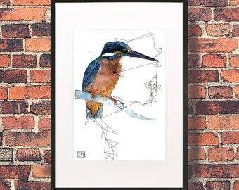 Kingfisher Lines