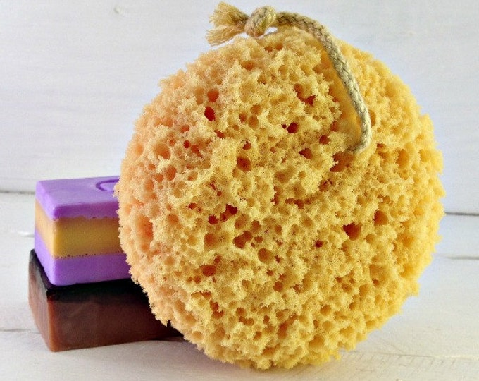 Foam Sea Sponge, Bath Sponge, Hanging Bath Sponge, Spa Accessories, Shower Sponge, Sea Sponge, Sponges, Loofah, Facial Puff,