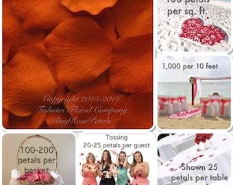 500 Burnt Orange Tangerine Rose Petals for Weddings