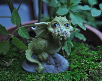 Speak No Evil Dragon
