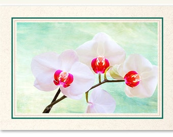 White Orchid Flowers, Photo Note Card, Photo Greeting Card, OOAK Card, White Orchid Card, All Occasion Card, Handmade Card, 5x7 Blank Card