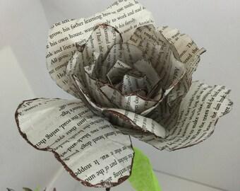 Vintage Romance Novel Paper Rose