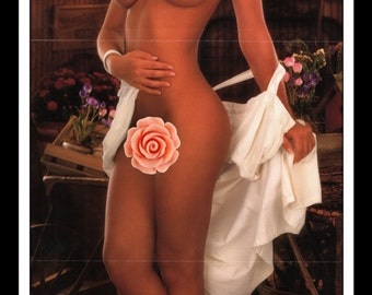 "Mature Playboy April 1992 : Playmate Centerfold Cady Cantrell Gatefold 3 Page Spread Photo Wall Art Decor 11"" x 23"""