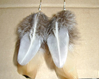 Pheasant feathers earrings.