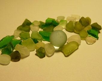 Genuine Surf Tumbled Barcelona Sea Glass - 1 oz