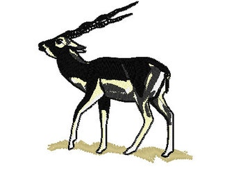 Blackbuck Antelope Embroidery Design