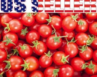 30+ ORGANIC Sweetie Cherry Tomato Seeds Heirloom NON-GMO Sugar Sweetie