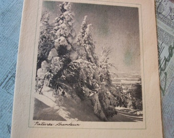 Vintage 1940's Christmas Card - Used - Without Envelope.