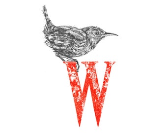 W for Wren A4 signed limited edition print