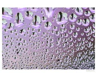 Abstract Photography PRINT, Deep Purple, Wall Art