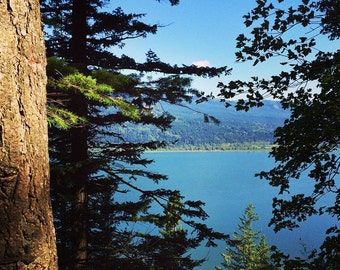 """Columbia River from a Forested Hiking Trail Outside of Portland, Oregon, Square 5"""" x 5"""", Fine Art Photography, Wall Art Decor"""