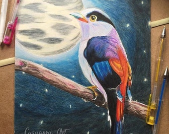 Silver-Breasted Broadbill with the Moon - Original Drawing