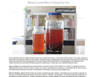 DIY Kombucha Creation eBook - Learn to Make Your Own Kombucha + Why It's Good for You