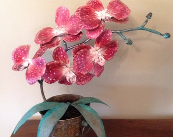 Valentine's Day gift Orchid