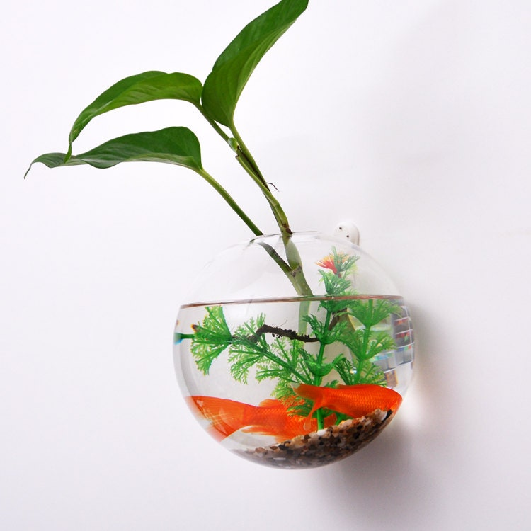 Wall Hanging Planter wall bubble terrarium // wall plant planter vase// wall