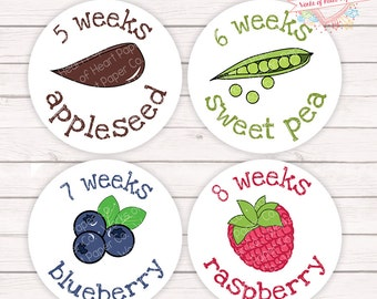 Pregnancy Stickers - Pregnancy Belly Stickers - Pregnancy Week Stickers  - Weekly Stickers - Belly Bump Stickers - Maternity Stickers