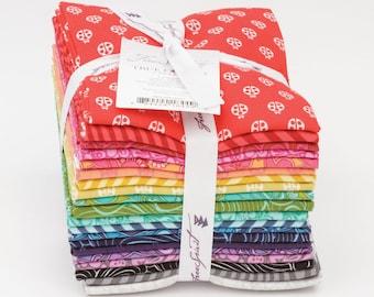 True Colors by Tula Pink - Fat Quarter Bundle