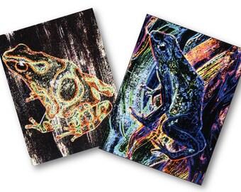 SALE postcards set 2 piece art prints frog - frogs - postcard art print - SALE - offer - Terraristik picture motifs