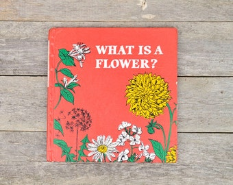 Vintage 1970s Children's Book - What is a Flower? / Illustrated Children's Book