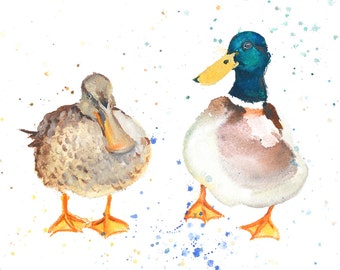 Limited Edition Mr & Mrs Duck