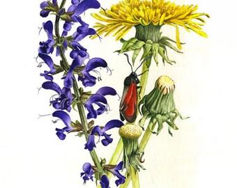 Sage meadows and dandelion-digital printing