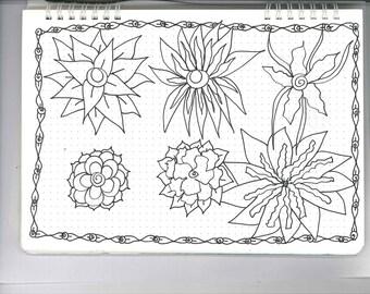 6 Different Flowers 24b