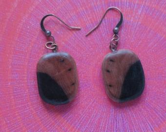 Ebony earrings