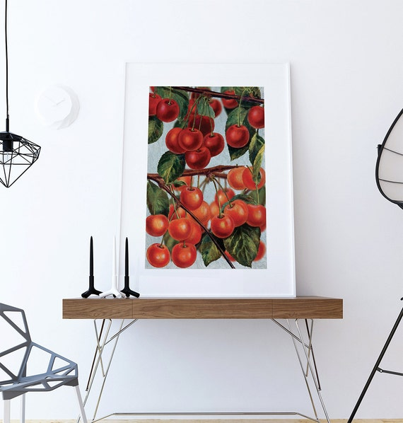 Kitchen wall art cherries print kitchen print food photograph for Art prints for kitchen wall