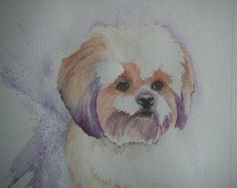 Shih Tzu watercolour painting