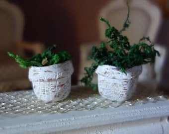 A green plant potted in foam and polymer clay