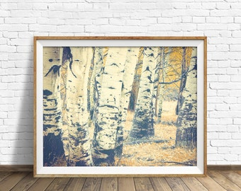 "aspens, large art, large wall art, instant download, instant download printable art, photography, print, wall art - ""A Walk in the Forest"""