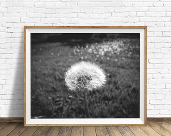 "nature photography, large art, printable art, instant download printable art, black and white, digital download, gray - ""Dandy Dandelion"""