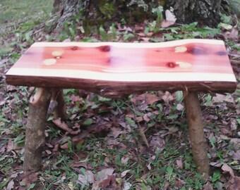 Chld's Cedar Bench