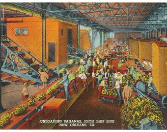 Vintage Linen Postcard, 1930's-1940's, Unloading Bananas From Ship Side, New Orleans, Louisiana