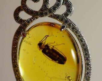 Dominican Amber Fossil-BAP606 Super Nice Lightning Bug on 925 Silver Base Pendant