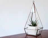 Glass Terrarium - Small Teardrop Terrarium / Hanging Terrarium / Display Box / Candle Holder by Geodesium