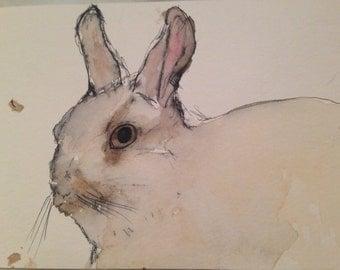 Custom Pet Portrait (ink & water color)
